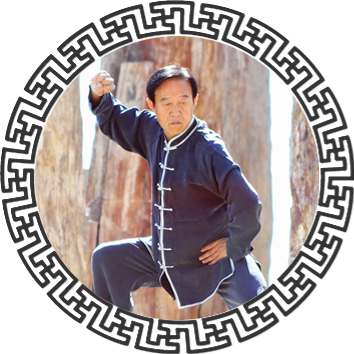 Tai Chi 18 Form DVD for the book